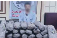 Photo of ضبط مهرب بحوزته 60 كيلو جرام بانجو بالدقهلية
