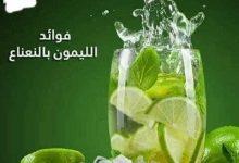 Photo of فوائد مشروب الليمون بالنعناع وطريقتهم بطريقه سهله وبسيطه