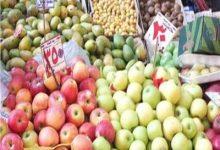 Photo of أسعار الفاكهة والخضروات في سوق العبور