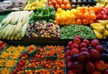 Photo of الزراعة: ارتفاع صادرات مصر الزراعية لـ أكثر من 3.6 مليون طن