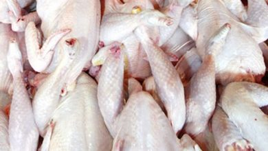 Photo of ضبط دجاج فاسد داخل مطعم للوجبات الجاهزة بمنطقة العبور