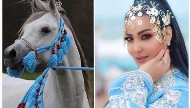 "Photo of سمية الخشاب تداعب جمهورها بعد تشبيهها ""بالحصان"""