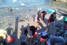 Photo of أجانب ومصريون ينظفون مياه الاسكندرية من المخلفات