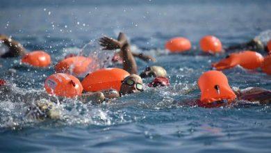 Photo of إدريس: مسابقة Ocean Man بادرة أمل لعودة كل أنشطة السباحة محليا ودوليا