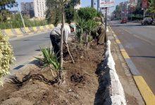 Photo of حمله لتقليم الاشجار وازالة القمامة بشوارع مدينه المحله