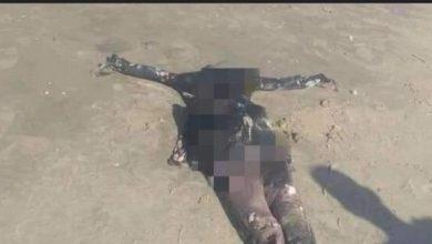 Photo of صياد يعثر على جثة متحللة بأحد شواطيء بلطيم