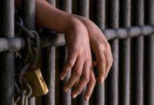 Photo of القبض علي 12 متهم بتهمة البحث عن الآثار