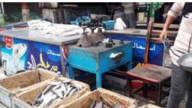 Photo of إعدام أغذية متنوعة وإغلاق منشأت مخالفة بالدقهلية