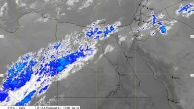 Photo of الأرصاد تحذر وتعلن إنخفاض درجات الحرارة وسقوط أمطار علي مدار الاسبوع